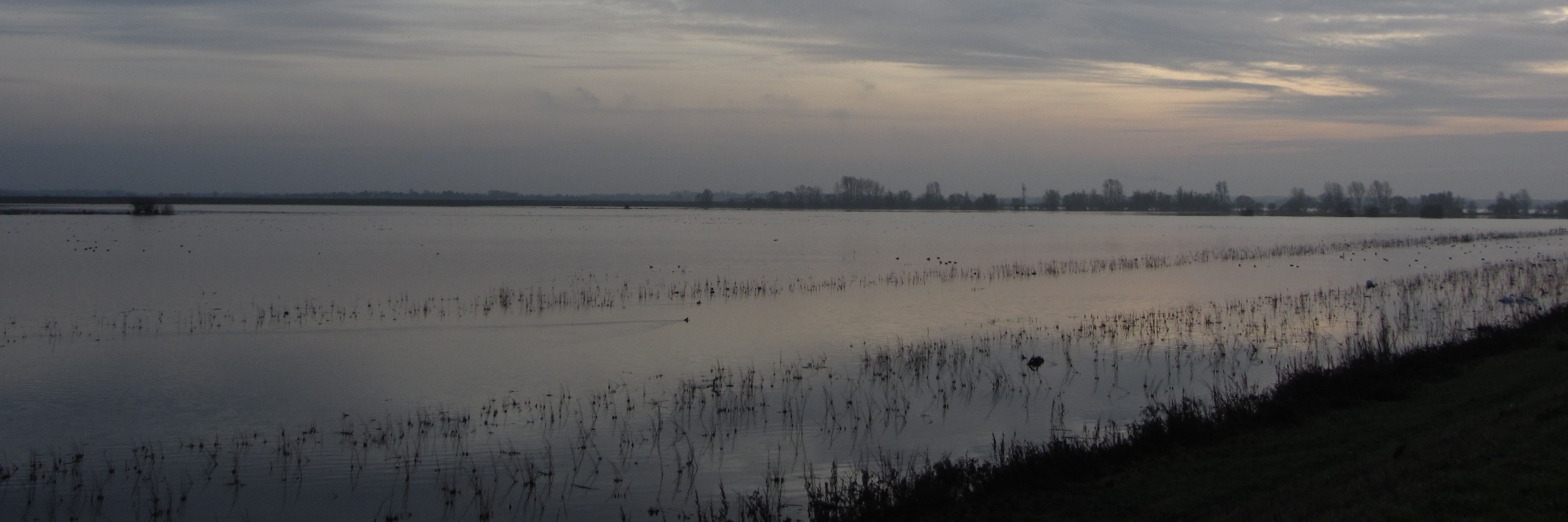 Flood water at the ouse washes. Very grey